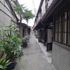 Ajiki Roji Kyoto