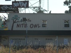 The Nite Owl