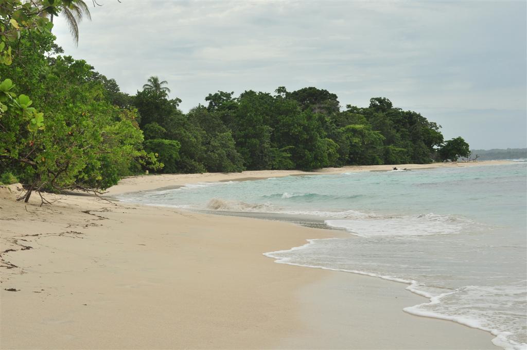 Paradisíacas playas frente a un poco profundo arrecife lleno de vida y color. bocas del toro - 7598245182 e948b0f057 o - Bocas del Toro, escondido destino vírgen en Panamá