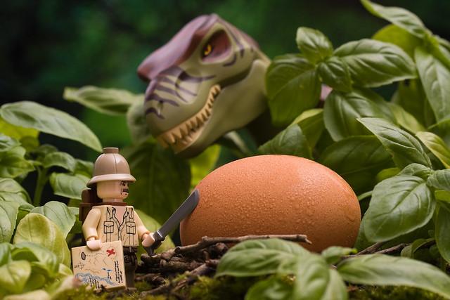 """Obama Changes His Name to """"Tyrannosaurus Rex"""""""