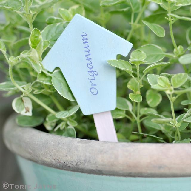 Handmade Origanum herb label