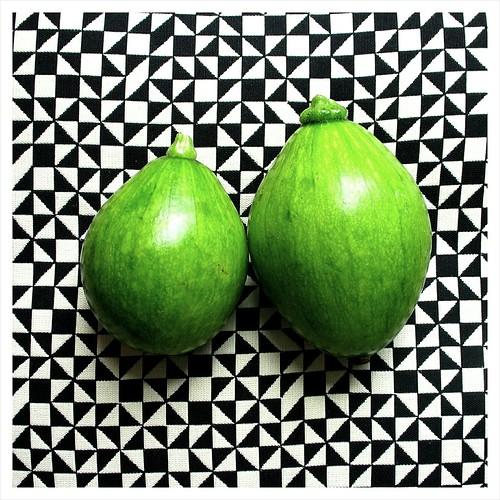 avocado squash
