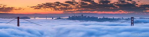 sf sanfrancisco city bridge fog sunrise cityscape marin scenic goldengate bayarea headlands hawkhill sffog