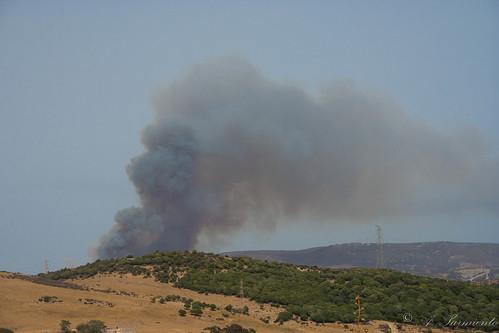 215/365+1 Vista de Incendio desde Cerro Marcelo by Alfonso Sarmiento.