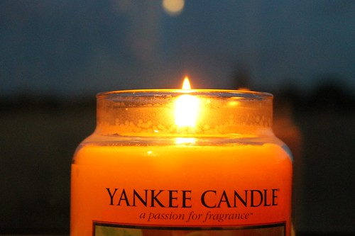 Yankee Candle - Vanilla Cupcake