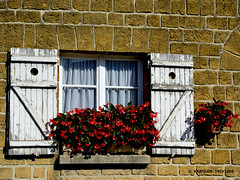 BEGONIAS ON THE WINDOW . . .  (FRANCE, CHAMPAGNE-ARDENNE, BUZANCY) - Photo of Nouart