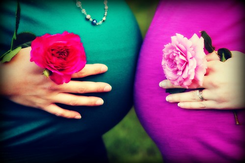 baby bellies and roses