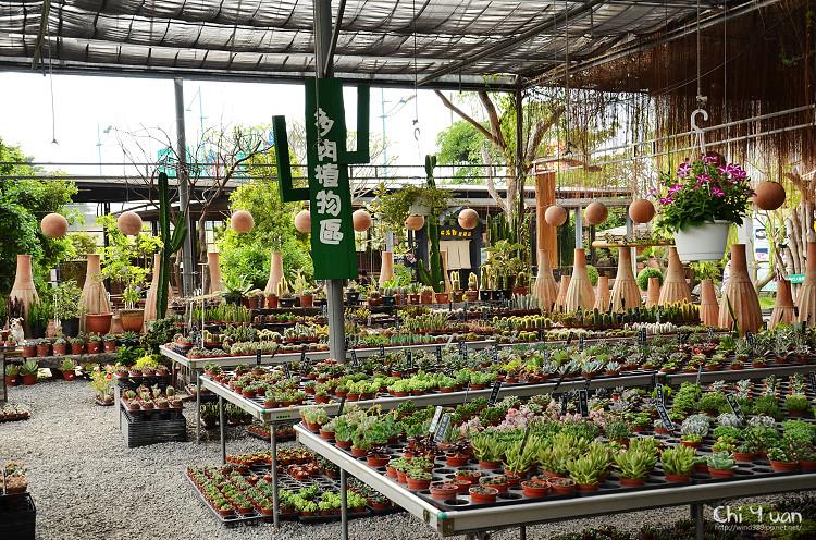 台北花卉村-多肉植物03.jpg