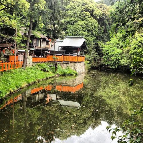 Fushimi-Inari #japan #japon