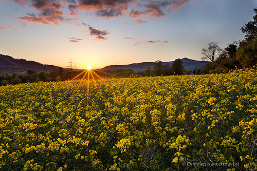 uk sunset sun mountain field wales spring farmers flare crops sugarloaf burst abergavenny rapeseed canon60d canon1635lii cunocyn cynfelynnancarrowlei