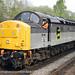 BR Railfreight Coal: Class 40 Diesel Locomotive (fiction) by northernblue109