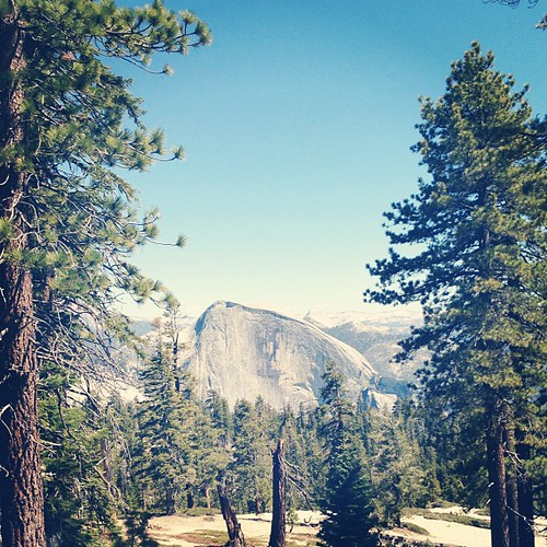 Yosemite. Half Dome from Indian Rock.