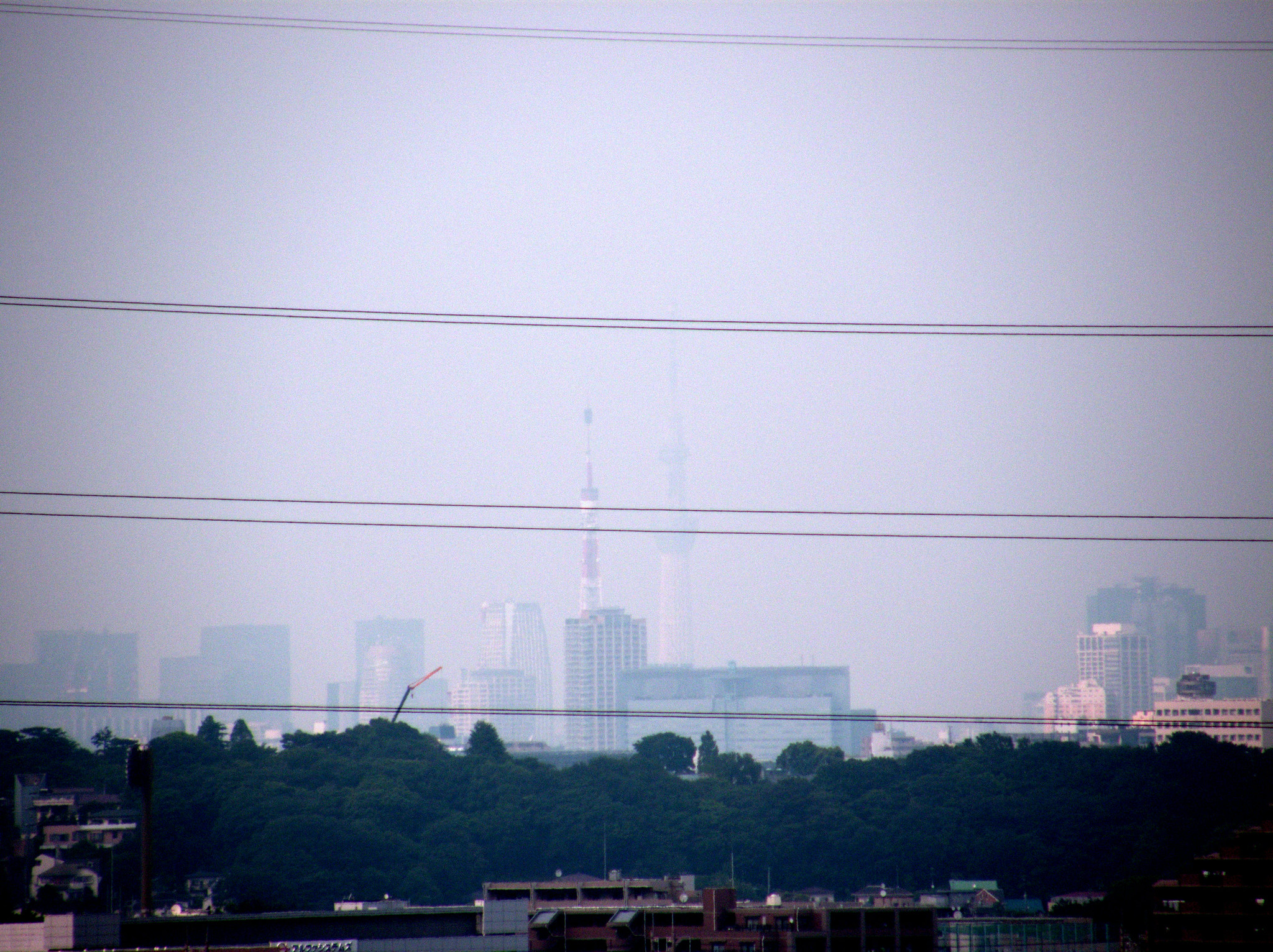 東京タワーと東京スカイツリー