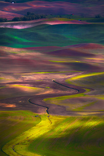 The Palouse_Tapestry Of Colors