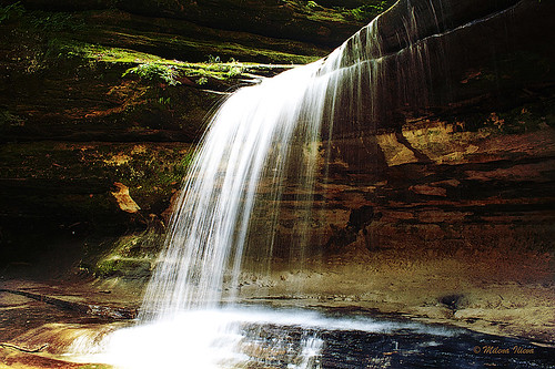 Nature in motion - LaSalle Canyon in Starved Rock state park, IL