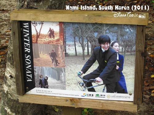 Nami Island 05
