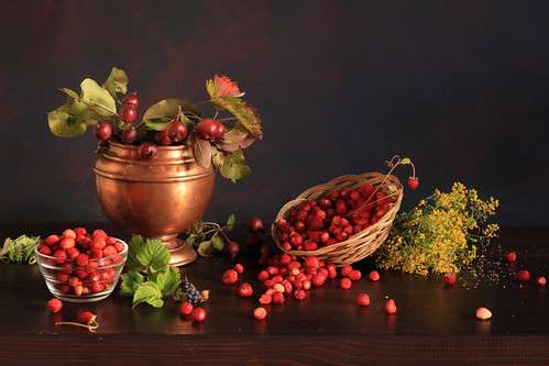 Crabapples And Wild Strawberries