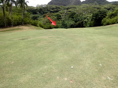 Royal Hawaiian Golf Club 209b
