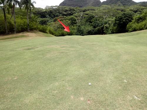 Royal Hawaiian Golf Club 209b