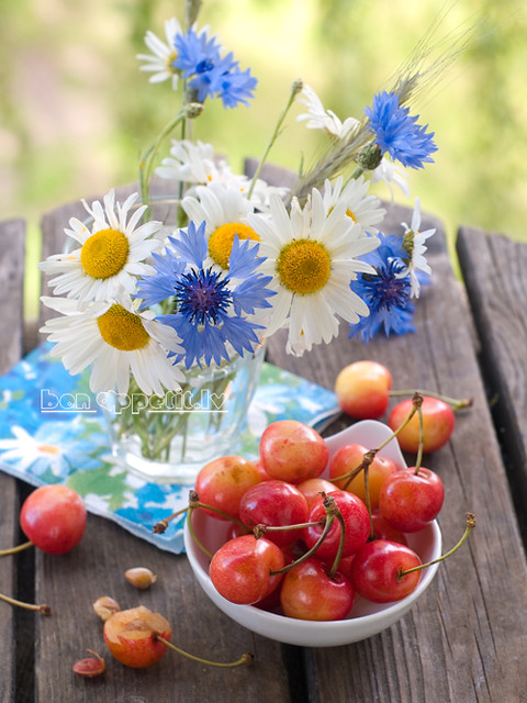 wild flowers with cherry