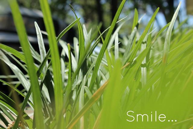 Summer Smile...