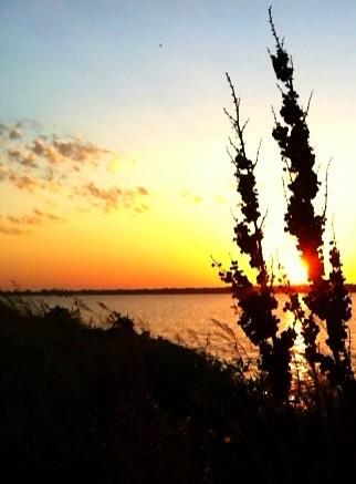 lake reflection sunrise route66 mobileuploads iphoneography