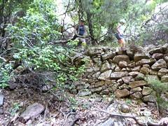 Le vieux chemin de la brèche du Carciara