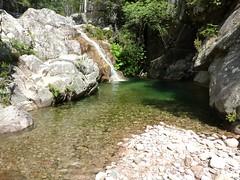 Avant la confluence Frassiccia/Velacu : dans le lit du ruisseau, une vasque-cascade à contourner