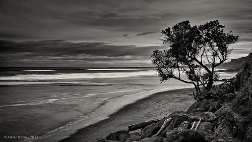seascape beach water monochrome rocks wanganui whanganui kaiiwi mowhanau adrianrumney