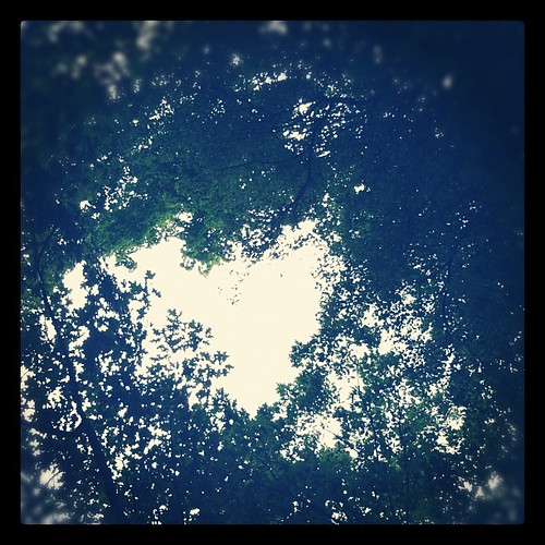 Miracle view from the hammock. So glad I lay down. #summer #tree #heart xoS
