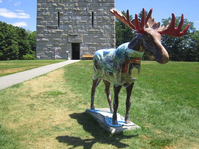 Painted Moose