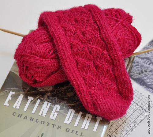 Yarn Along ~ Lace Sock