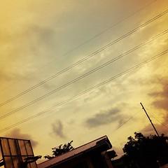 26/31: sunshine. #photoadayjuly