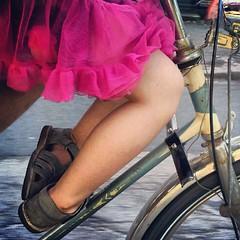 Lulu Cycle Chic