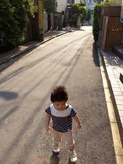 朝散歩 とらちゃん (2012/7/26)