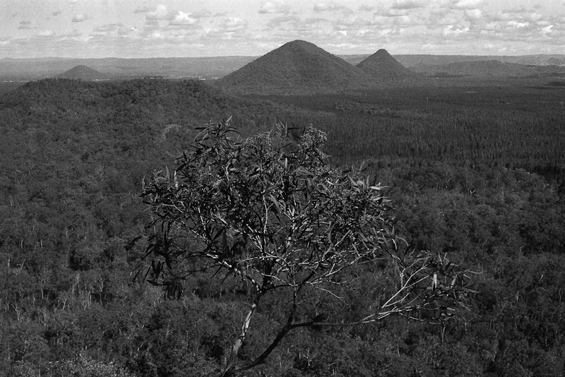 Mt Tibrogargan, Glass House Mountains National Park