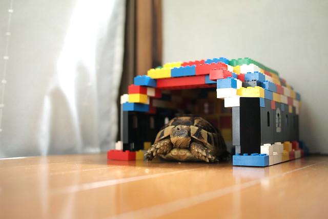 LEGOのおうち