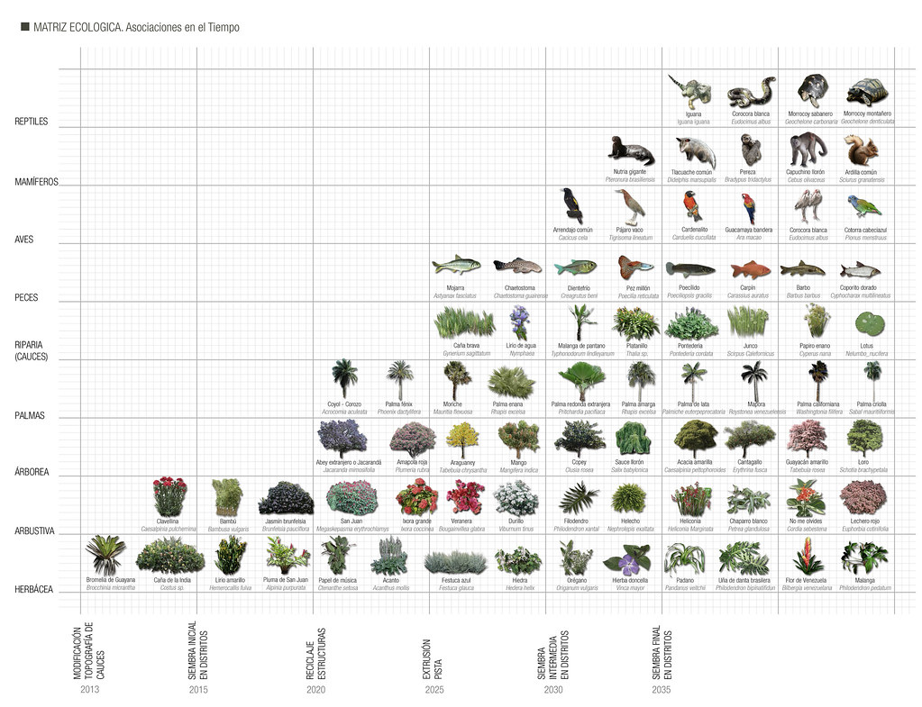 Planta baja estudio de arquitectura 39 s most recent flickr for Plantas de arquitectura