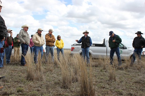 L.H. Webb, a rancher in Pampa, Texas, addresses the group at the training on his ranch to explain the management practices he has implemented to benefit the lesser prairie-chicken.