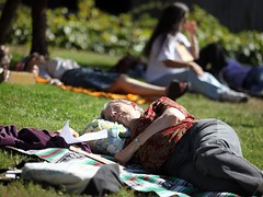 "Adrienne Lauby participates in a ""flash nap"" on the lawn at Santa Rosa City Hall."