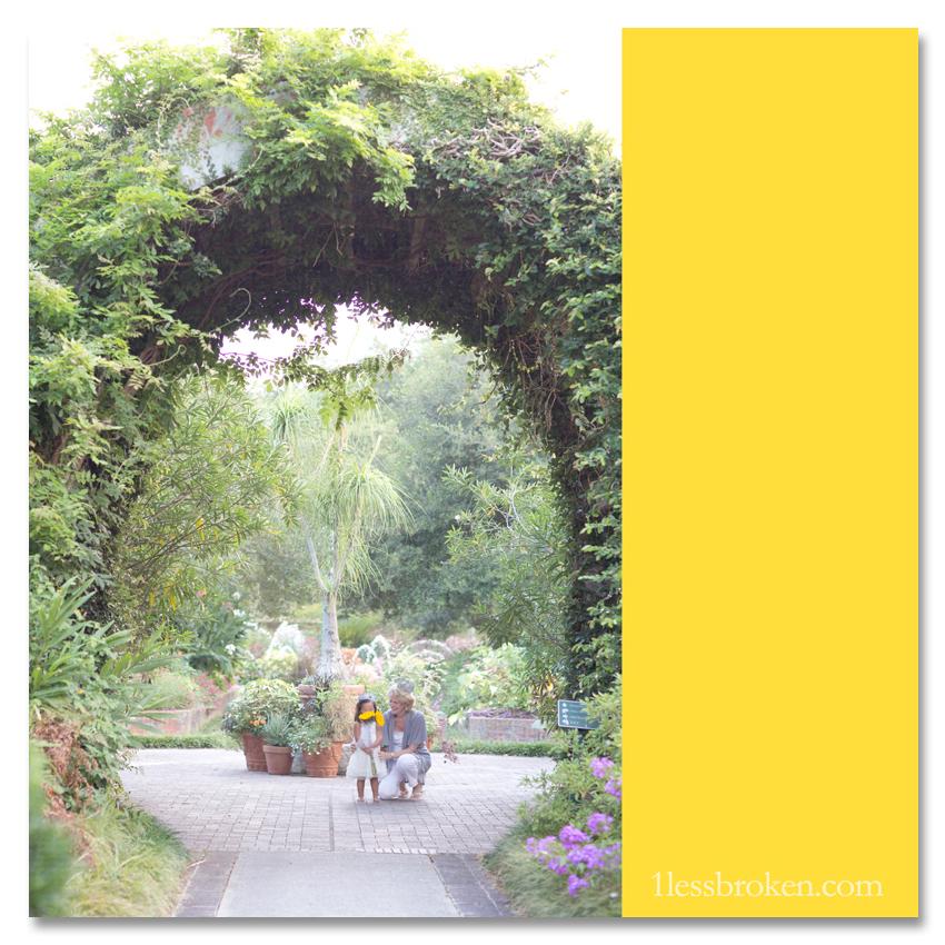 BLOG arch in garden