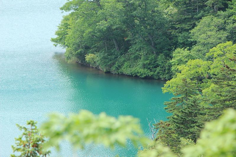 オコタンペ湖の景色