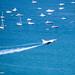Glide by ashleydiener