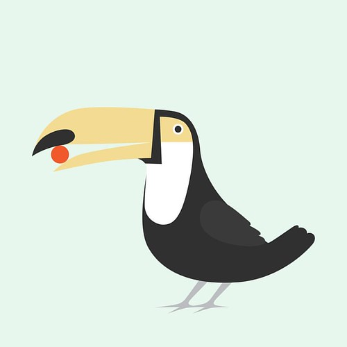#tucan #animals #illustration #colombia