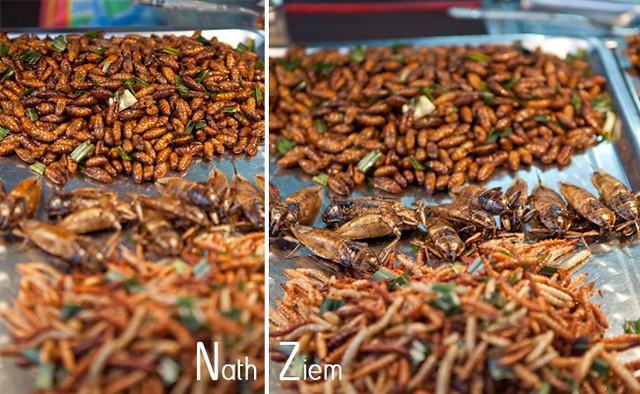 thailande_insectes_grilles