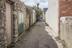 Laneway Off Edenvale Road (Ranleagh)