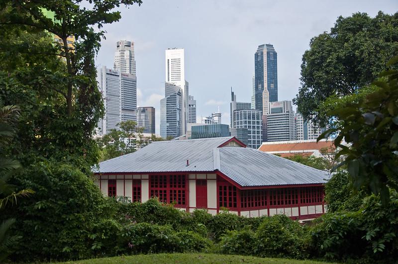 Небоскребы на фоне деревьев в Сингапуре