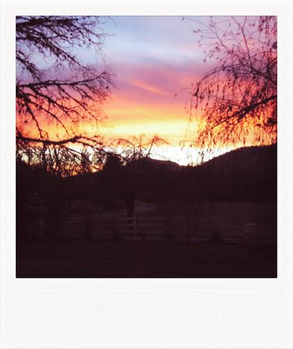 sunset oregon canon polaroid archive 2006 polaroidtype600