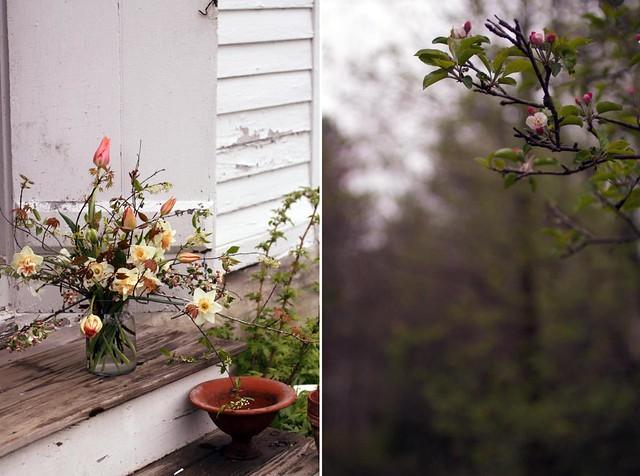 farm_flowers