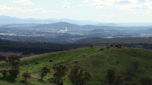 Canberra and Queanbeyan from Taliesin Hills